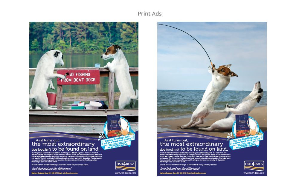 Fish-for-Dogs-1